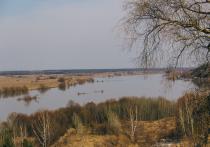 В Рязанской области стоимость моста-дублёра через Оку возросла до 19 миллиардов