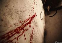 Следком опубликовал кадры с места обнаружения погибших девочек в Киселевске