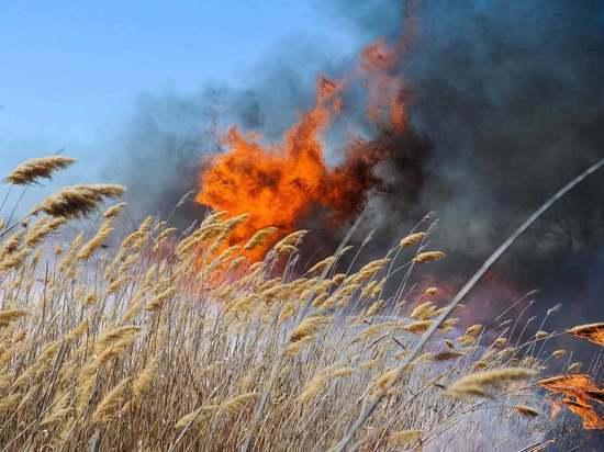 МЧС предупредило о возможных пожарах на юге России