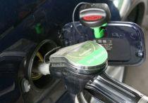 НАРЭ вызвали «на ковер» в парламент из-за роста цен на топливо