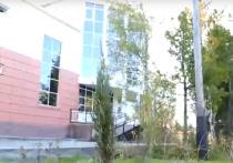 На посадку 300 новых деревьев приглашают жителей Шурышкарского района
