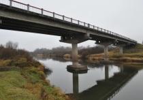 Почти 300 млн рублей потратят на ремонт моста через реку Великую в Пушкиногорском районе