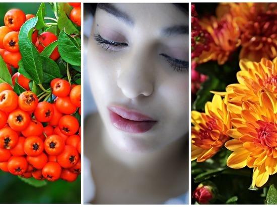Анфиса Рябинница, Международный день красоты, День Хризантемы ‒ какой сегодня праздник в Томске, 9 сентября