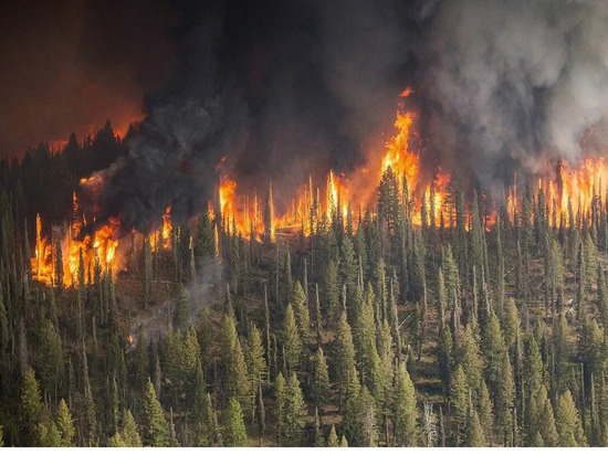 В Усть-Майском районе Якутии активно тушат пожары