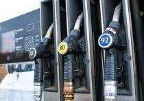 Бензин подешевел в среднем на 0,3%, до 48,93 рубля за литр, а дизтопливо — на 0,1%, до 50,62 рубля за литр
