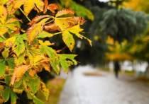 Ранней осенью температура может сильно колебаться в течение одних суток