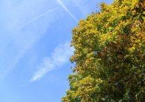 Согласно прогнозам метеорологов, последним теплым днем в этом месяце станет следующая среда, 15 сентября