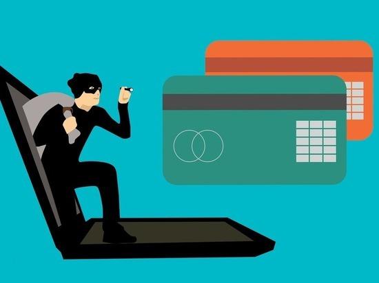 Число интернет-мошенничеств в Томской области в этом году уже превысило 2 тысячи