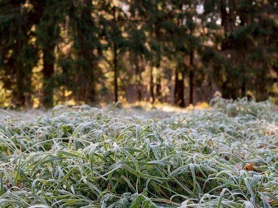 В Ростовской области прогнозируются заморозки