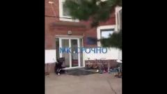 Опасное осиное гнездо в детском саду попало на видео