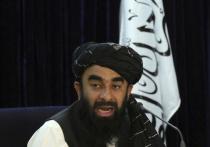 «Его превосходительство»: отношение Таджикистана и Узбекистана к  «Талибану» разошлись