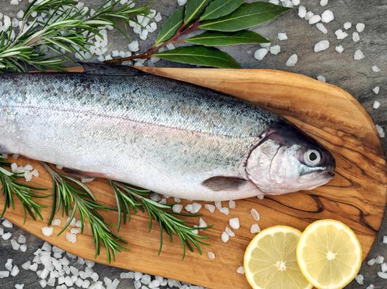 Россельхозбанк оценил размер привлекательных для себя инвестиций в рыбохозяйственную отрасль в 300 млрд. рублей