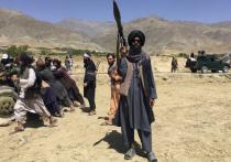 Запрещенное в России террористическое движение «Талибан»   назначило церемонию вступления в должность своего нового правительства на 11 сентября — в двадцатую годовщину страшных американских терактов