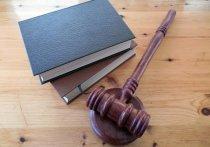 В Чувашии бывшего гаишника оштрафовали за подлог и мелкие взятки