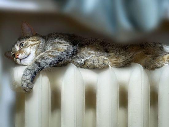 Что должно произойти, чтобы в домах Петербурга включили отопление раньше срока