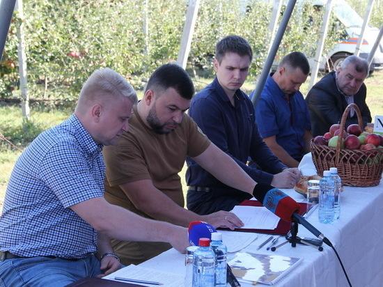 В ДНР предвидят временные трудности при объединении с ЛНР