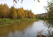 Заброшенный пруд благоустроят в Новом Уренгое