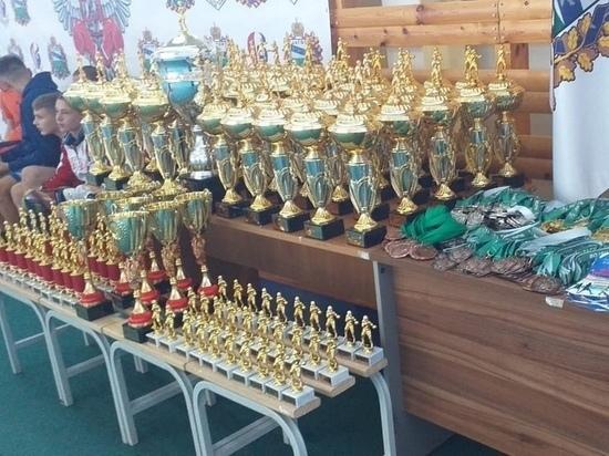 Мичуринские боксёры завоевали золото на турнире в Курской области