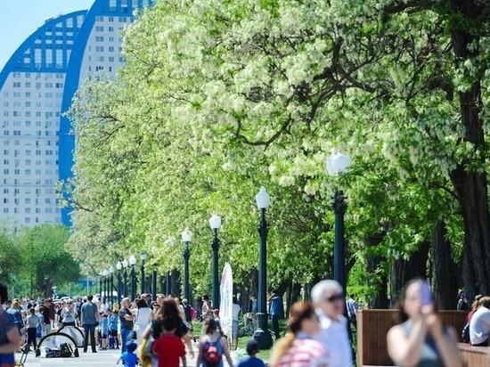 Волгоградцев в День города ожидает ясная погода при +24 градусах