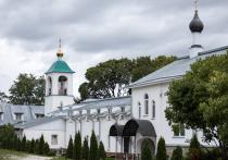 Проект спасения Снетогорского монастыря от подтопления создадут в 2022 году