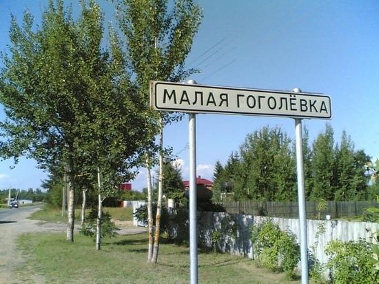 Дополнительную форму голосования применят в Псковском районе
