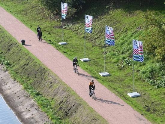 Велосипедисты испытали первый участок велотрассы, соединяющей Петербург и Москву
