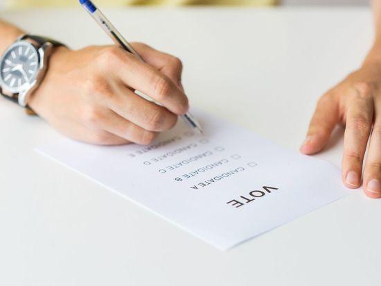 Горизбирком попросил СК проверить информацию о наборе фальсификаторов студентом СПбГУ