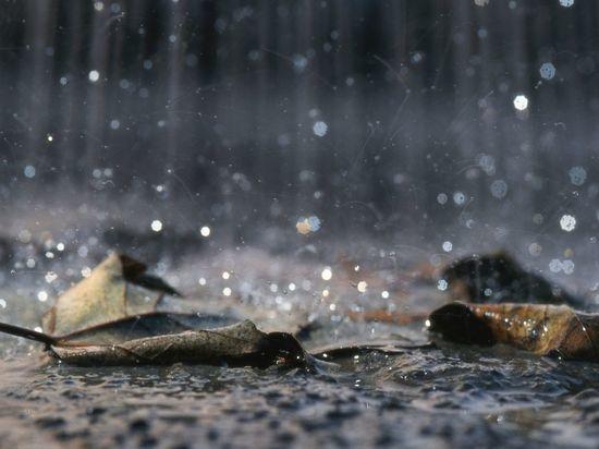 Рабочая неделя в Петербурге началась с дождей
