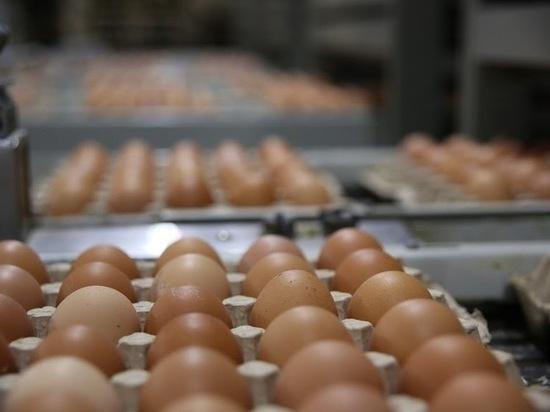 В Астраханской области не допустили вывоз за границу шашлыка и 1440 яиц