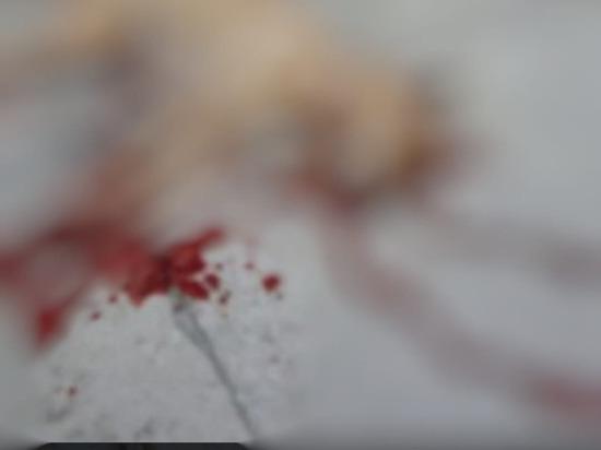 В Касимове объявили вознаграждение за информацию об убийстве собаки