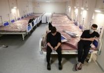 В Хакасии еще 3 закрытые из-за COVID больницы вернулись к плановой работе