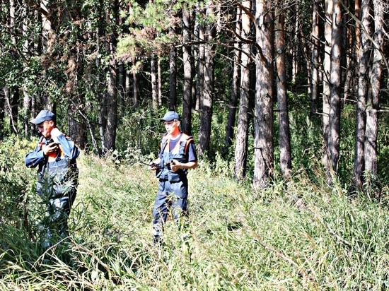 В Кемеровском районе женщины с детьми потерялись в лесу