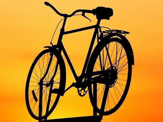 В поселке на Брянщине полиция раскрыла кражу велосипеда