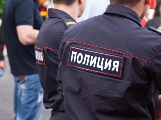 Троих воров в Тульской области поймали полицейские за сутки
