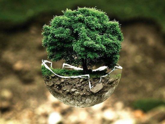 Экологический проект завода «Титан-Полимер» вошёл в полуфинал премии «Мы вместе»