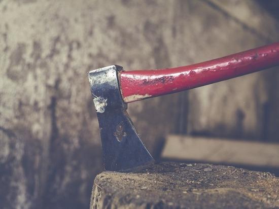 В подмосковном селе мужчина зарубил топором бывшего зятя