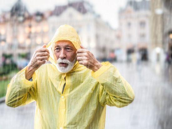 Петербуржцев попросили поделиться дождевиками с бездомными