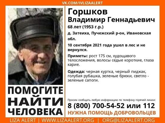 В Ивановской области ищут дедушку, пропавшего в лесу