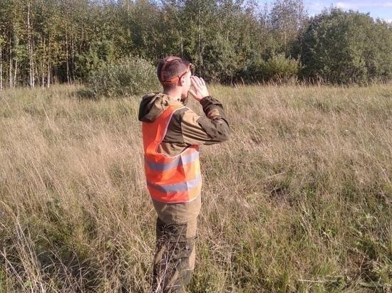 Новгородские спасатели прочесывают лес в поисках пропавшего