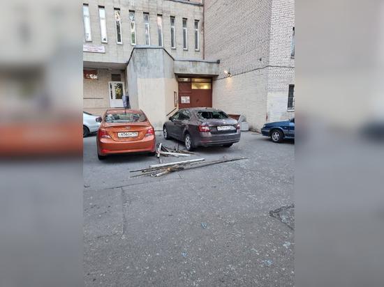 Мощный ветер повалил деревья и вырвал знаки в Петербурге