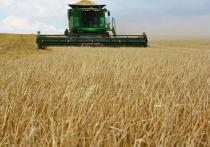 Рязанская область получит 124,5 млн рублей на поддержку аграриев