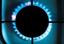 Цены на газ в Европе, которые каждый день бьют новые рекорды, стали следствием «паники на бирже»