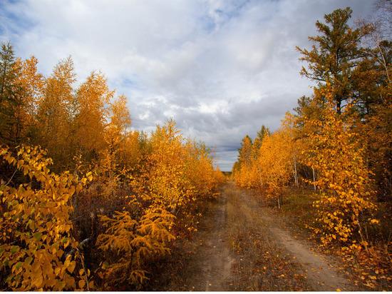 В Якутске в среду прогнозируется погода без осадков