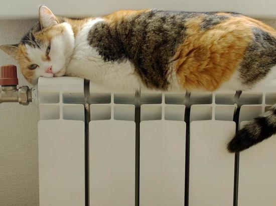 Стало известно, когда в Твери дадут отопление