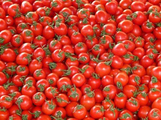 Ставрополье и КЧР вошли в топ-10 регионов по производству тепличных овощей