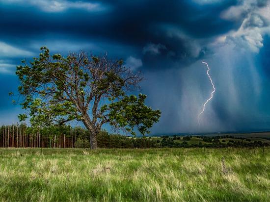 Новгородские энергетики перешли в режим повышенной готовности из-за циклона