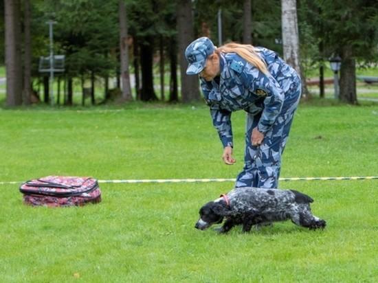 Псковский кинолог и ее собака Джесси стали призерами Всероссийских межведомственных соревнований