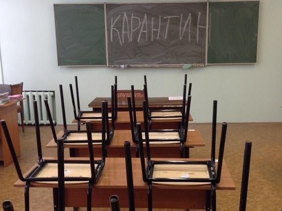 В Ярославской области школу из-за вируса отправили на карантин