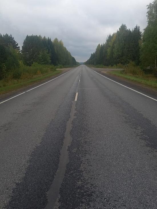 В Кировской области водитель на трассе насмерть сбил женщину и уехал