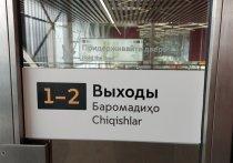 Языковые особенности разных народов учли при установке новых табличек-указателей в Московском метрополитене